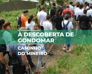 Caminho do Mineiro