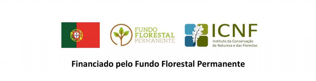 Comissão Municipal de Defesa da Floresta aprova medidas para 2020 5