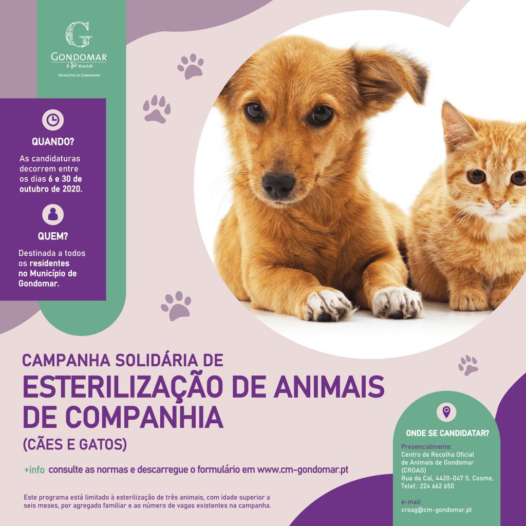 Campanha Solidária de Esterilização de Animais de Companhia 3